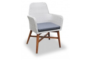 Swan Dining Chair